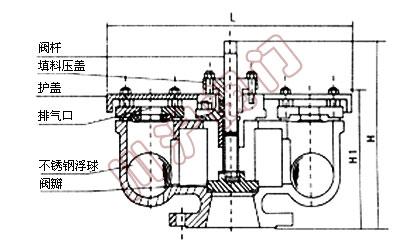 速排气阀结构图